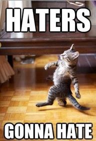 hater cat